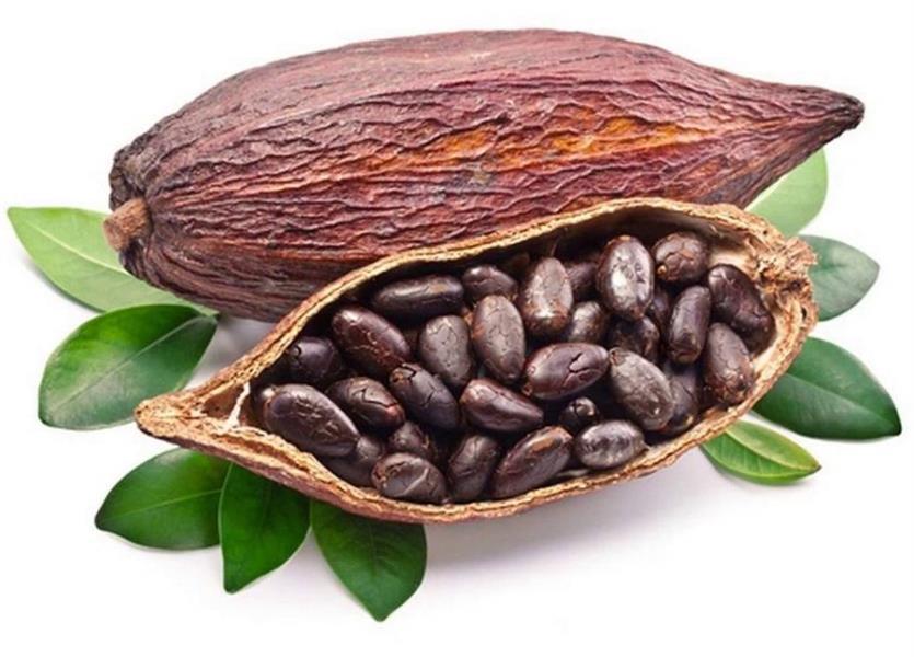 فاكهة الكاكاو