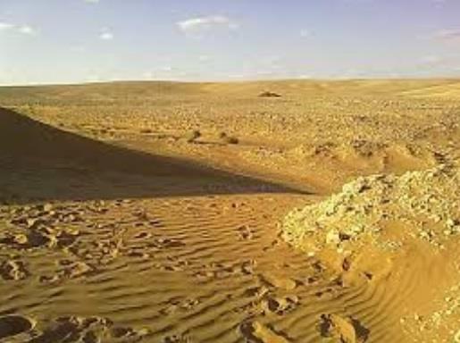 العثور على مُسن فُقد بمنطقة برية شرق عرعر بسبب موجة الغبار