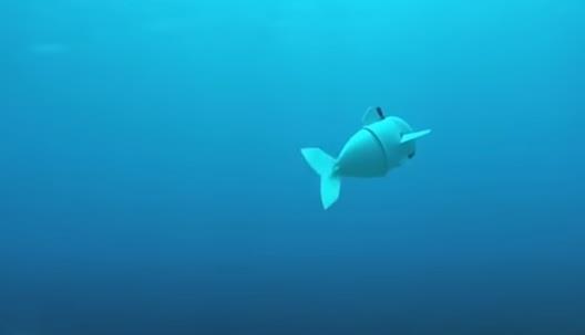 سمكة روبوتية للتجسس واستكشاف المحيطات (فيديو)