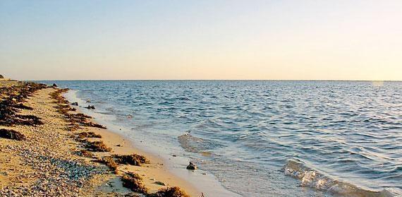 أمانة جدة مراقبة خليج سلمان بالأقمار غير صحيح