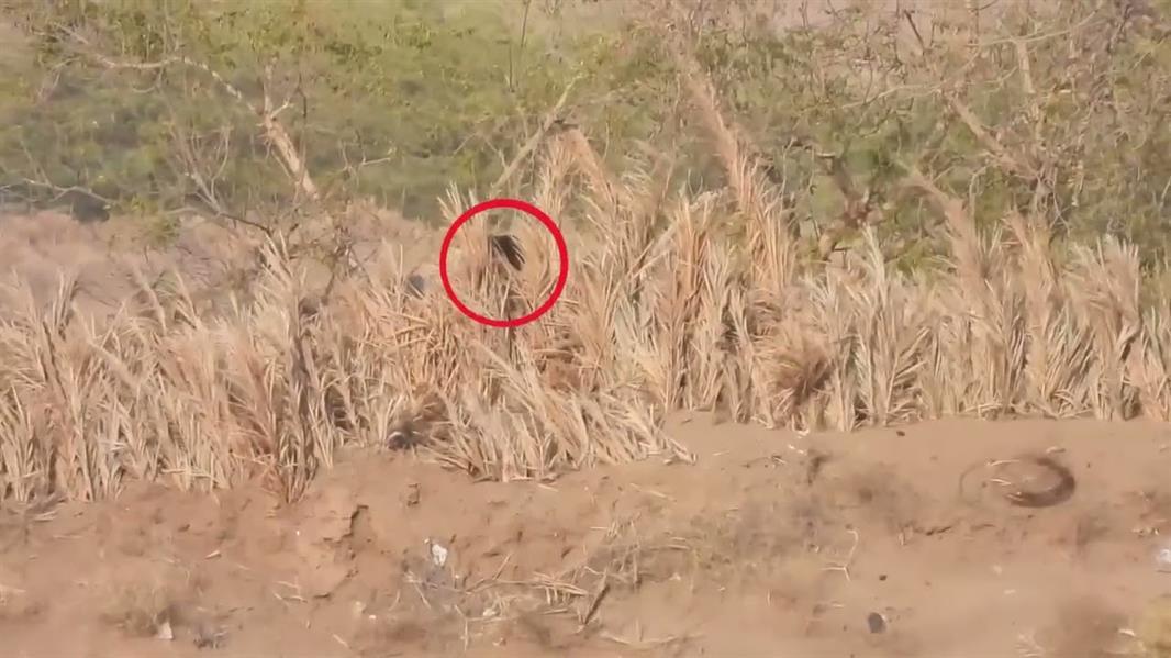 بالفيديو .. مقتل 7 قناصة حوثيين غربي اليمن
