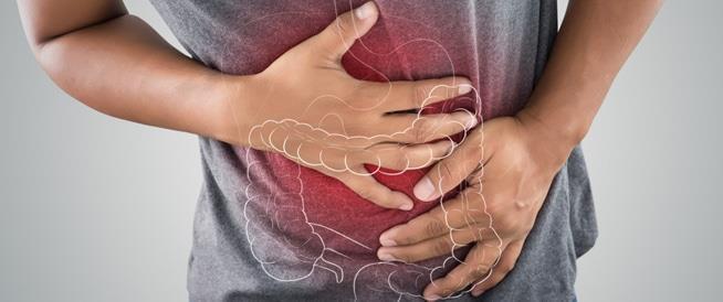 الجهاز الهضمي
