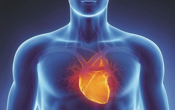 أمراض القلب والدورة الدموية