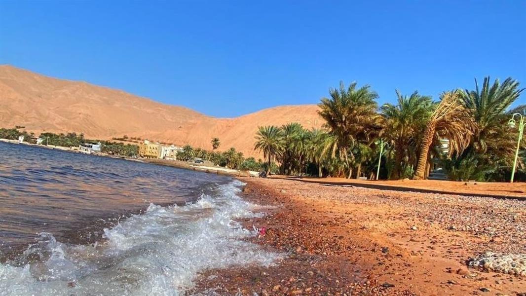 لتميز موقعه ومناخه.. شاطئ حقل جاذب للسياح طيلة العام (صور)