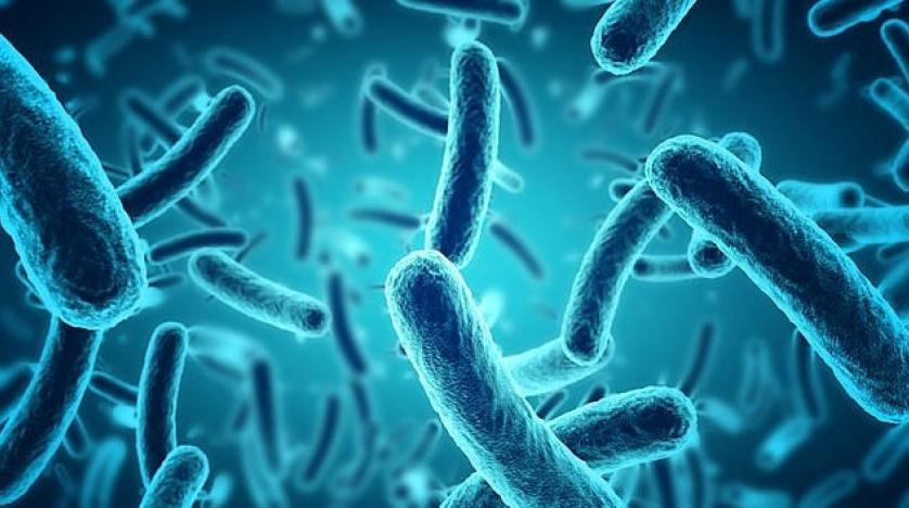 دراسة حديثة: البكتيريا السيئة بالجسم قد تسبب النوبات القلبية