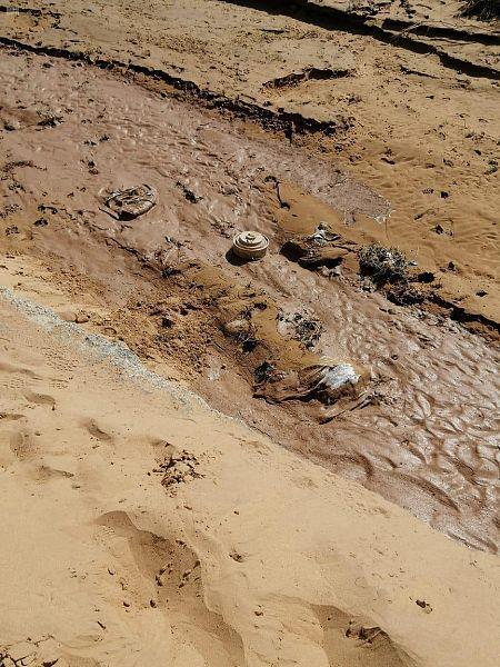 الدفاع المدني بمنطقة جازان يبطل مفعول لغمين أرضيين بأحد الأودية جرفتها سيول منقولة من الأراضي اليمنية