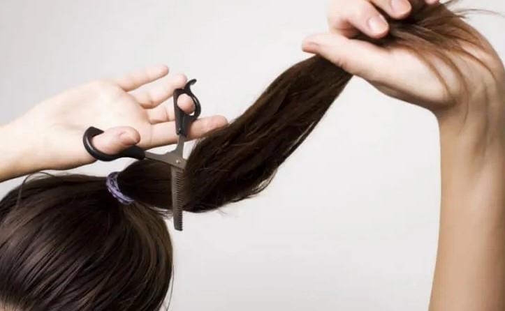 الشعر