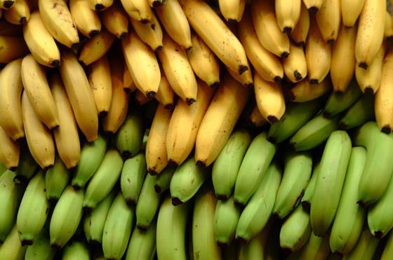 أيهما أفضل الموز الأخضر أم الأصفر؟  .. ينصح الخبراء