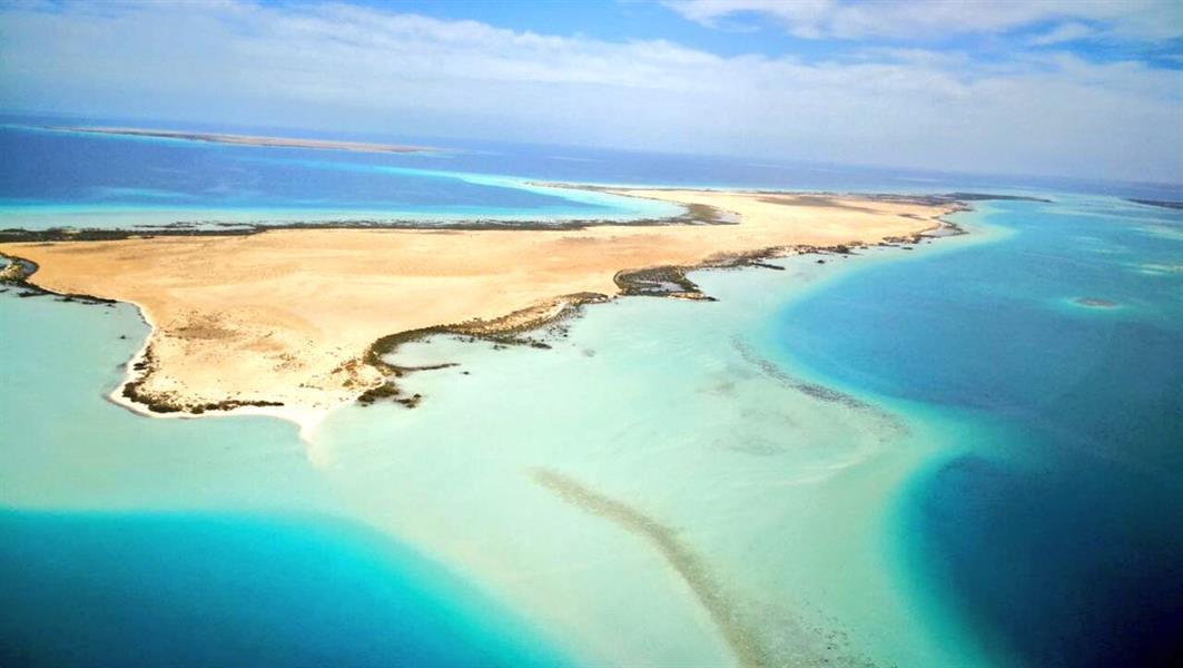 البحر الاحمر