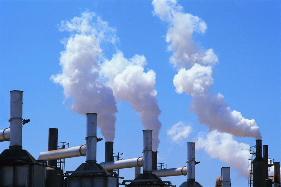 دراسة: الانبعاثات الضارة تهدد 90٪ من الأنواع بالانقراض