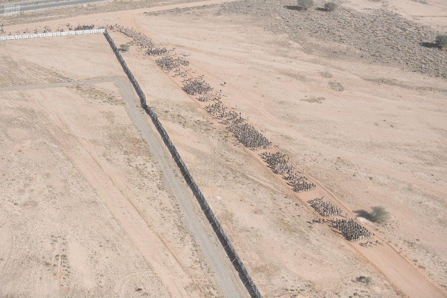 في منظر مهيب.. قوات الأمن الخاصة ينفذون مشروع السير الطويل بكامل عتادهم (صور)