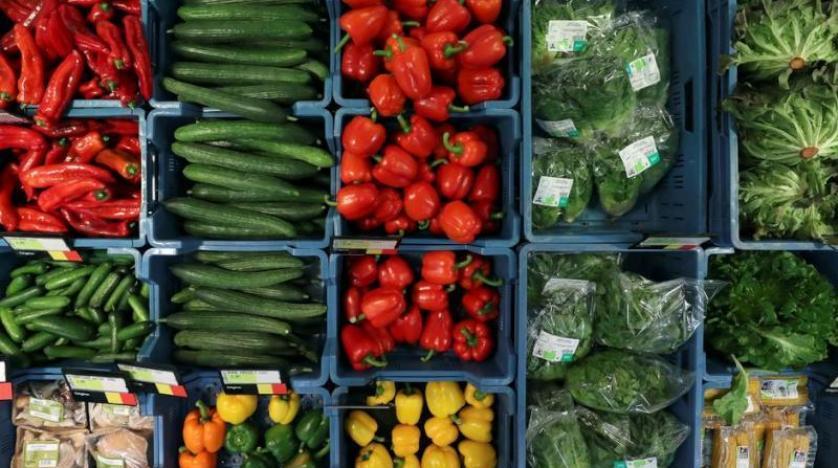 منها الفلفل والطماطم والبازلاء .. أطعمة لا تفقد قيمتها الغذائية عند التجميد