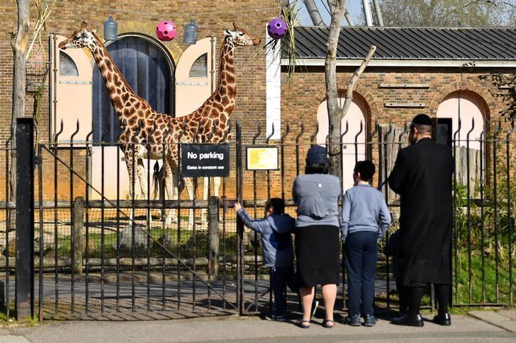 حديقة حيوان لندن