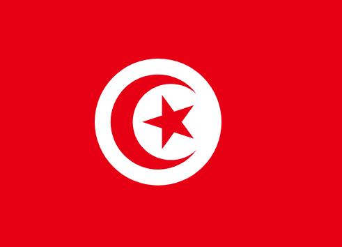 وزير خارجية تونس يؤكد أن موقف بلاده من الملف الليبي يرتكز على الشرعية الدولية والاتفاق السياسي