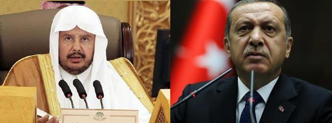 أردوغان يناقش مع رئيس الشورى السعودي قضايا سياسية وأمنية