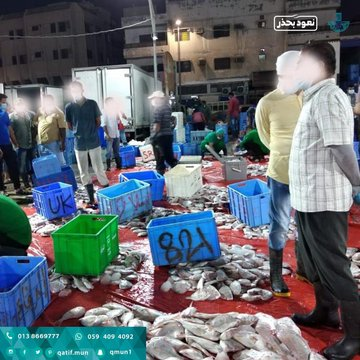 سوق السمك بالقطيف