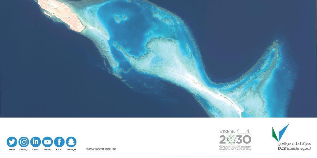 جزيرة الدولفين