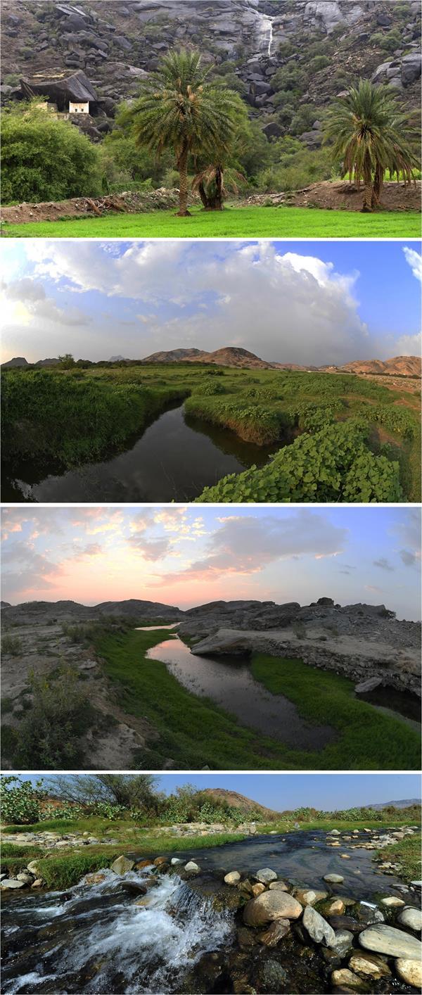 جمال الطبيعة في أودية عسير ومنحدراتها الجبلية