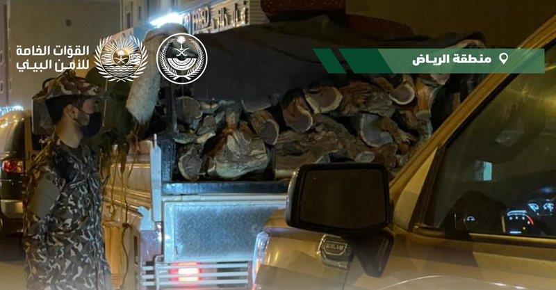 القوات الخاصة للأمن البيئي تضبط مخالفًا لنظام البيئة يبيع وينقل حطباً محليًا بالرياض