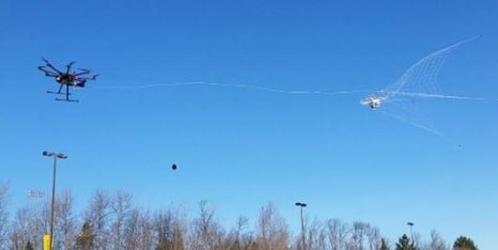 robotic falconry drone catcher