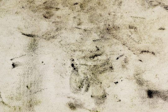 How To Get Grease Stains Out Of Car Upholstery