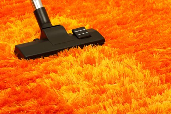 Cara membersihkan karpet bulu