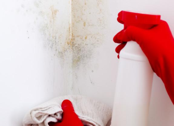 Cara Mengurangi Debu di Dalam Rumah