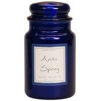 Village candle arctic spring metallic large jar www sajovi nl