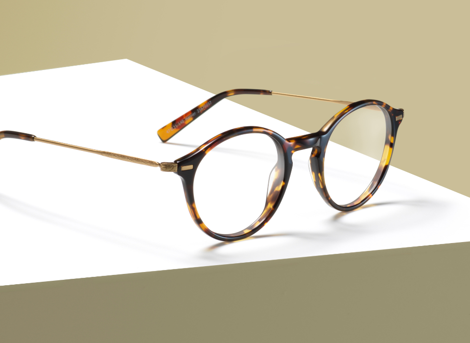 c3443945f1 Specsavers HARRIER. SKU 25670097. These vibrant tortoiseshell glasses ...