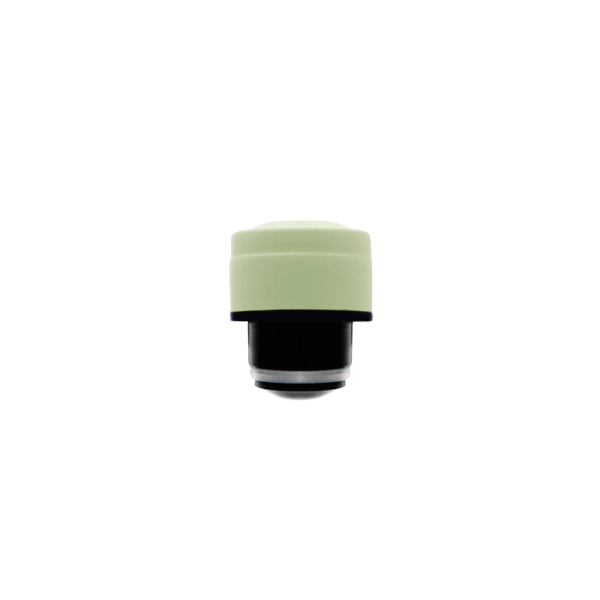 Tú botella de acero inoxidable - Tapón Pastel Green 5