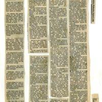 1983 Cork Examiner Interview Kieran Rose