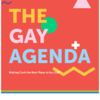The Gay Agenda - Making Cork the Best Place to be LGBT+ in Ireland