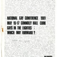 1981 National Gay Conference Cork Report