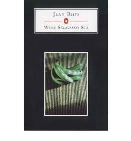 [(Wide Sargasso Sea)] [Author: Jean Rhys] published on (November, 2006)