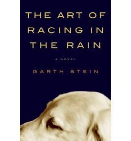 (THE ART OF RACING IN THE RAIN ) By Stein, Garth (Author) Hardcover Published on (05, 2008)