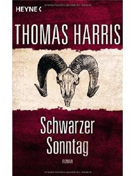 Schwarzer Sonntag: Roman (Paperback) - Common