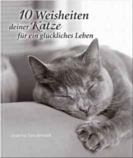 10 Weisheiten deiner Katze für ein glückliches Leben