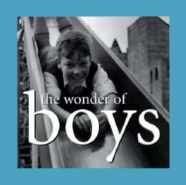 The Wonder of Boys (The Wonder of . . . Series)