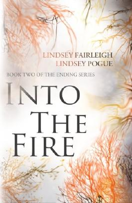 Into The Fire (The Ending Series) (Volume 2)