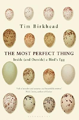 The Most Perfect Thing: Inside (and Outside) a Bird's Egg