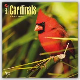 Cardinals 2016 - Kardinäle - Kardinalsvögel - Original BrownTrout-Kalender - 18-Monatskalender