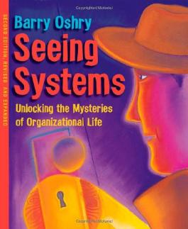 Seeing Systems: Unlocking the Mysteries of Organizational Life