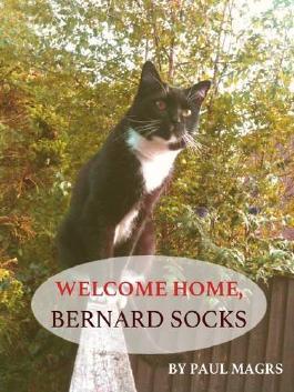 Welcome Home, Bernard Socks (Obverse Originals)