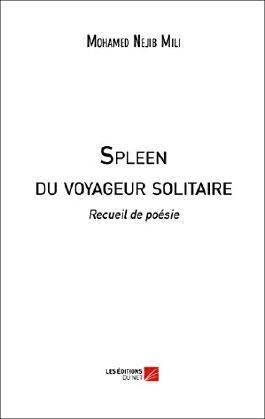 Spleen du Voyageur Solitaire
