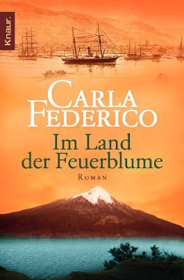 Im Land der Feuerblume: Roman