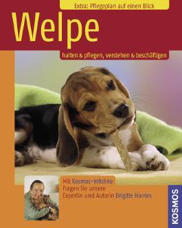 Welpe