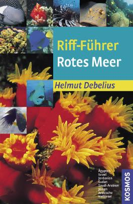 Riff-Führer Rotes Meer