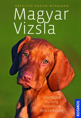 Magyar Vizsla