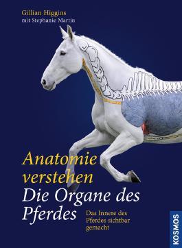 Anatomie verstehen - Die Organe des Pferdes