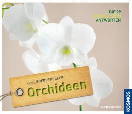 Soforthelfer Orchideen